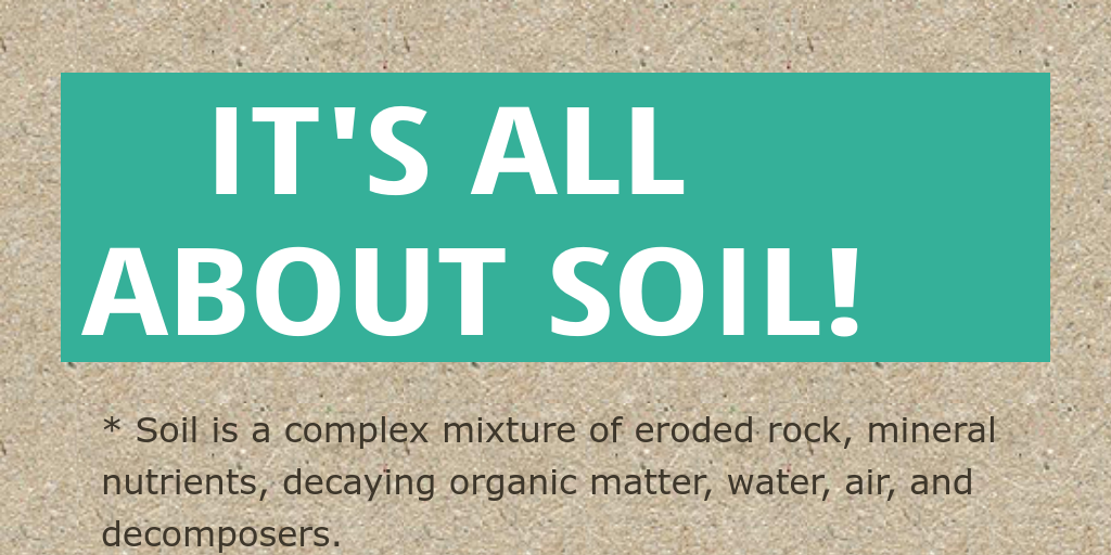 It 39 s all about soil by alaa12797 infogram for All about soil