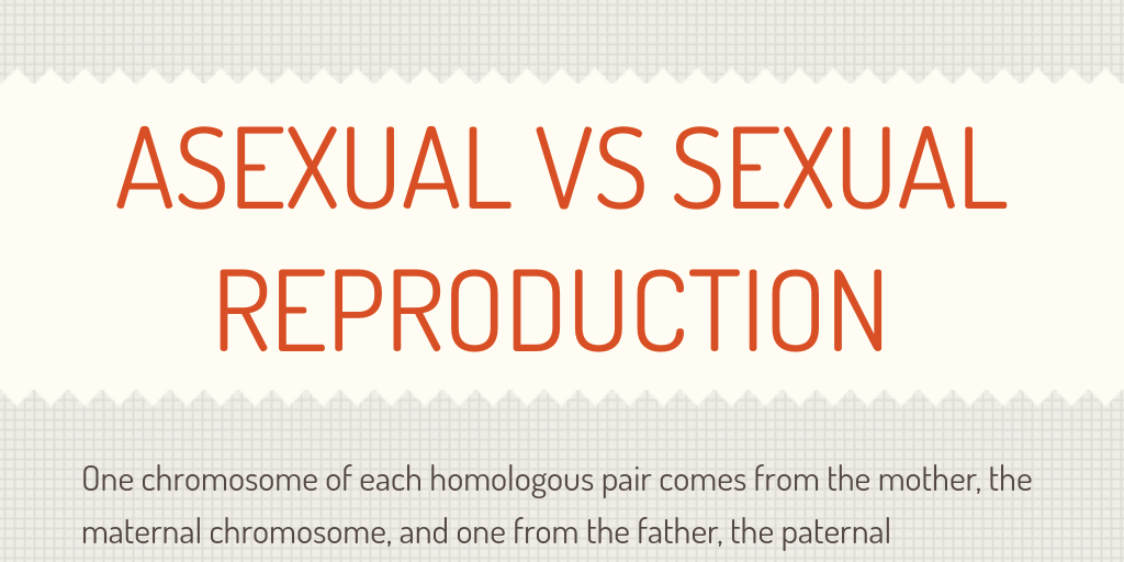 reproductin asexual or sexual