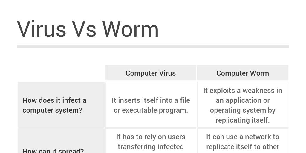 computer virus vs worm Virus vs worm by Victoria Shangina - Infogram