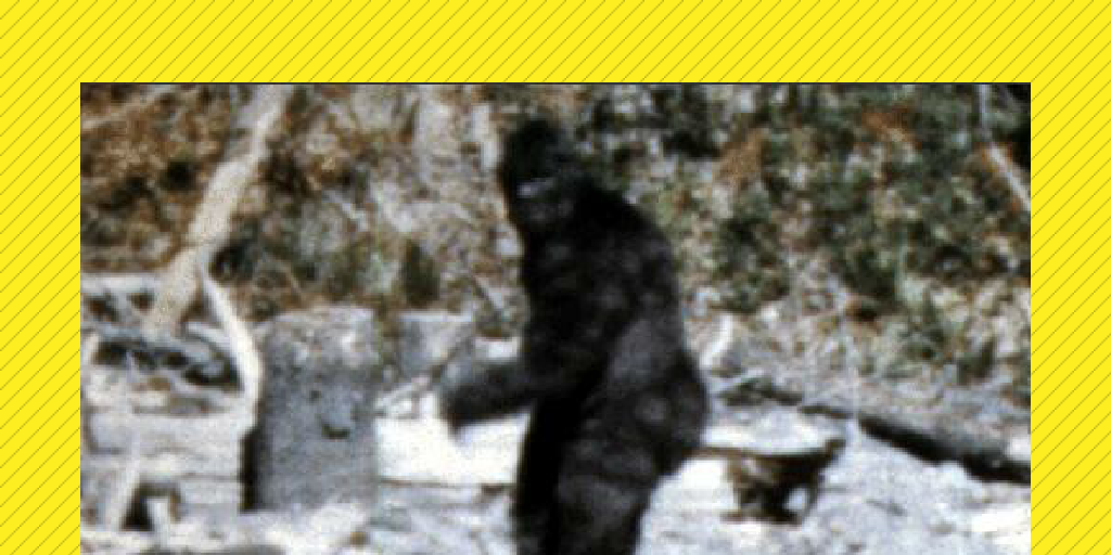 does bigfoot exist essay All the cryptids that you discuss in the book - bigfoot, the yeti, the loch ness monster, mokele mbembe - are very similar to things that exist or existed in the past: bears, primates.