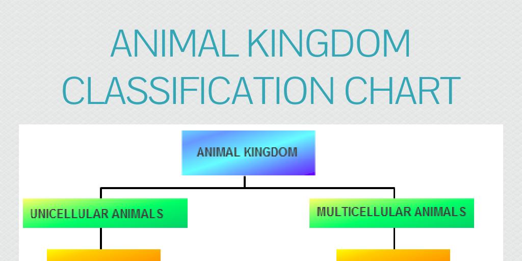 Table kingdom animalia Genus Wikipedia Animal Kingdom Classification Chart By James Infogram