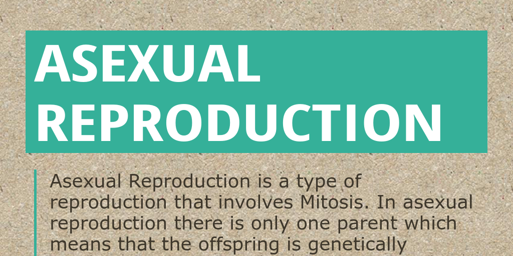 how many types of reproduction are there